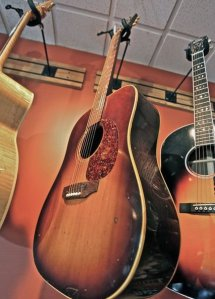 Bluefish Guitar